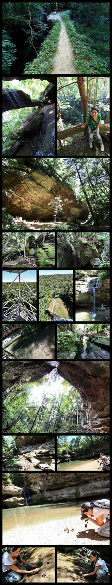Butterflies and Waterfalls by greenie