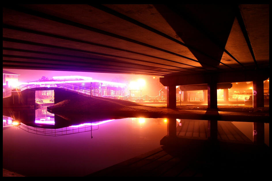 Purple Haze by greenie