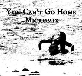You Can't Go Home by serdarot
