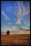 Elysian Skys by Sun-Seeker
