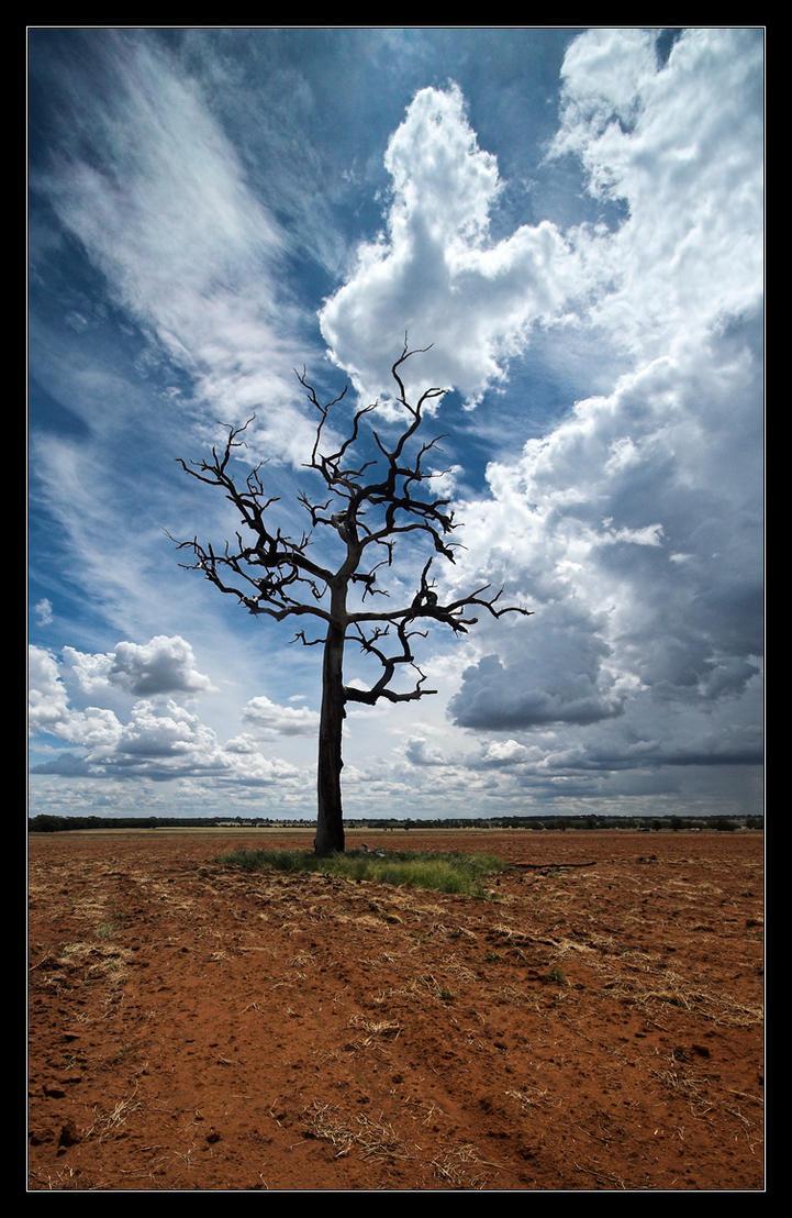 A Singular Rift in the Clouds by Sun-Seeker