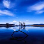 Visions In Blue by Sun-Seeker
