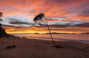 Good Morning Tasmania by Sun-Seeker