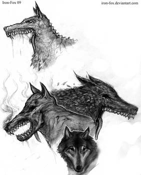 Wolf Request concepts