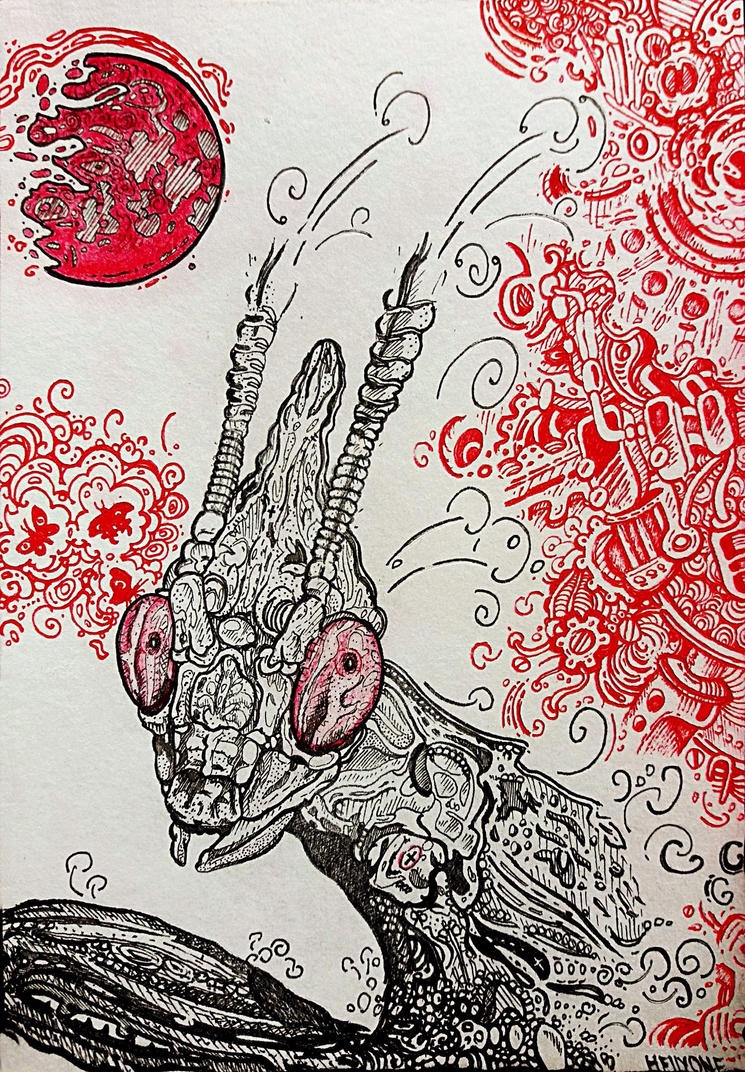 Praying Mantis Religiosa by HellyOne