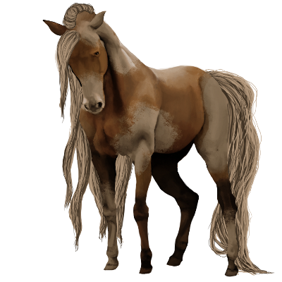New horse. by MysticForgotten