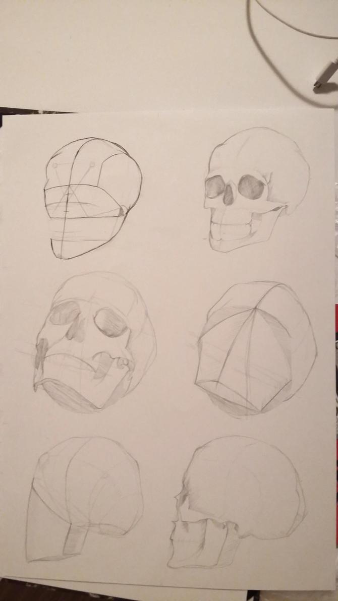 skulls #4 by mio-san13