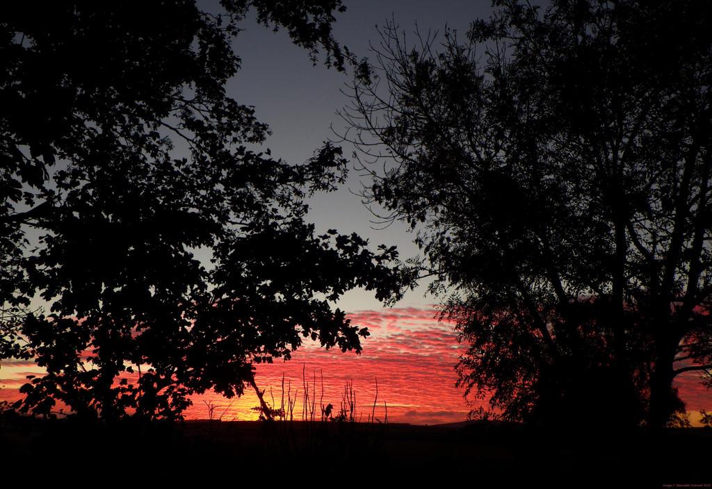 Sunset in Scotland by Zelandeth