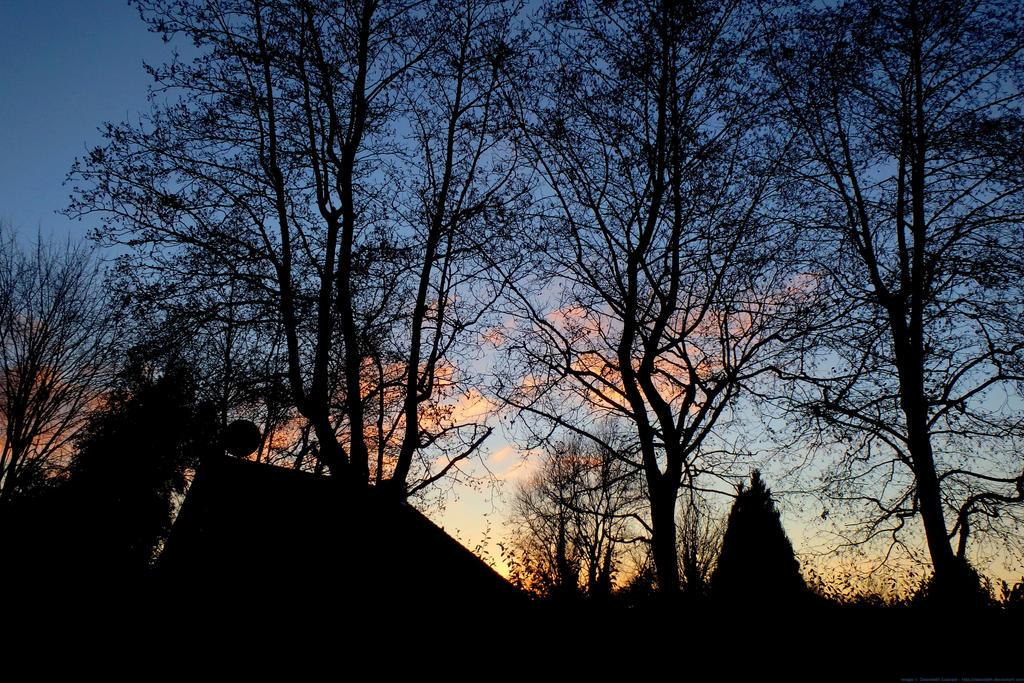Suburban Skyline by Zelandeth