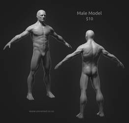 High poly male model