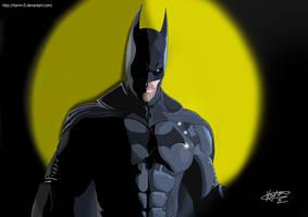Batman Arkham Origins by Karim-E