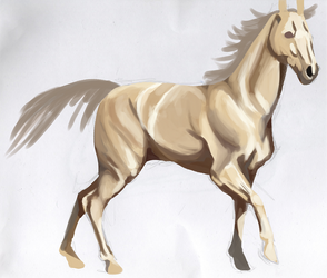Horse Study by alice-ruby