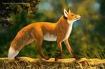 Foxwalk