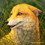 Foxy Smile 2