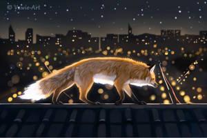 Urban Nights 2