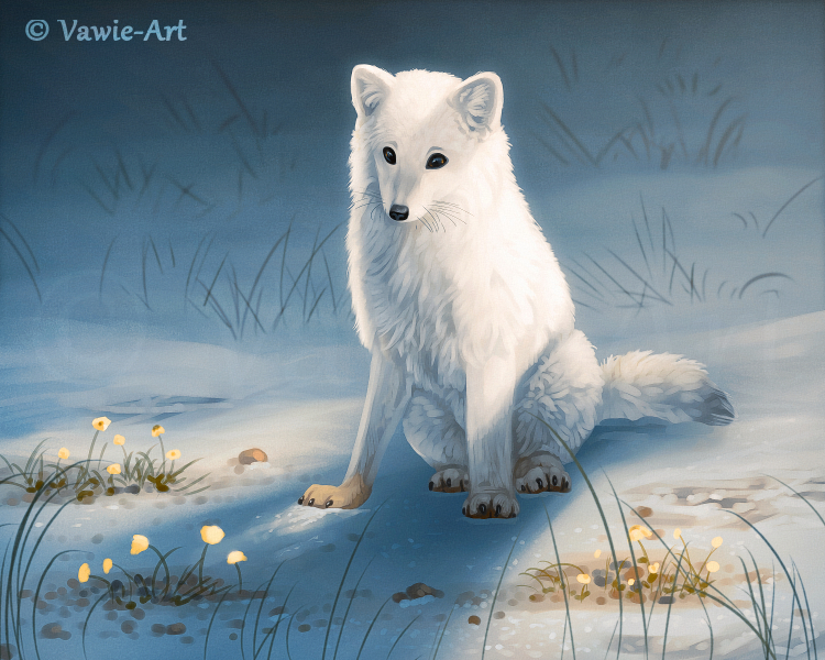 Arctic Treasures by Vawie-Art