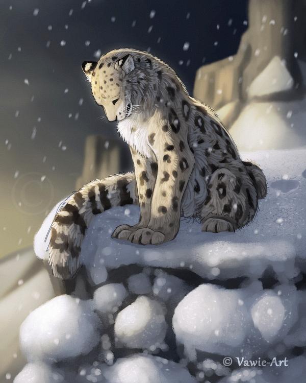 Snow leopard by Vawie-Art