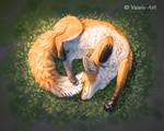 Fox Yoga by Vawie-Art