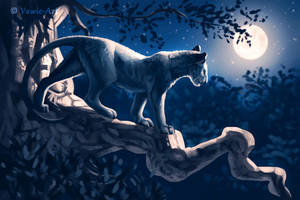 Panther at Night by Vawie-Art