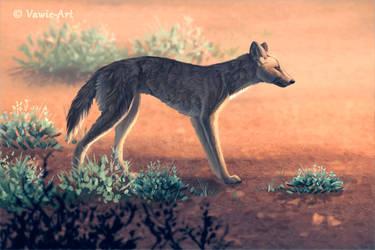 Dingo by Vawie-Art