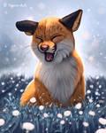 Sneezing Fox