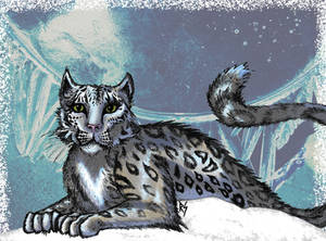 Snow Leopard Xmas Card 2019