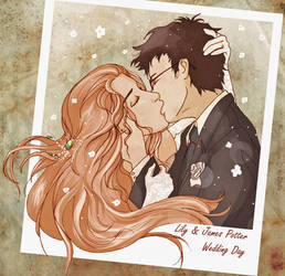 James and Lily Wedding Day by Chidori-aka-Kate