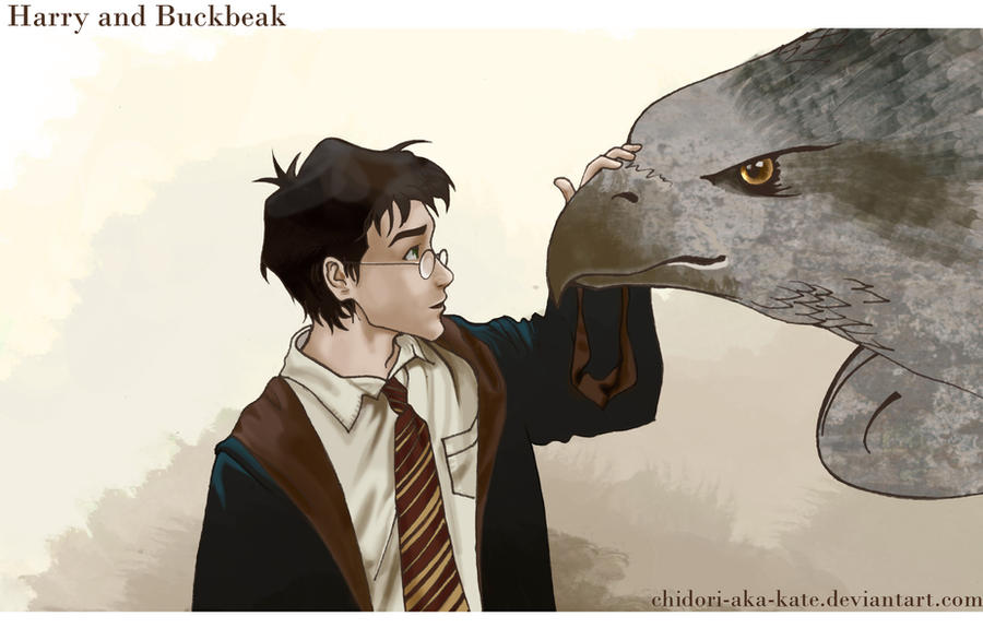 Harry and Buckbeak by Chidori-aka-Kate