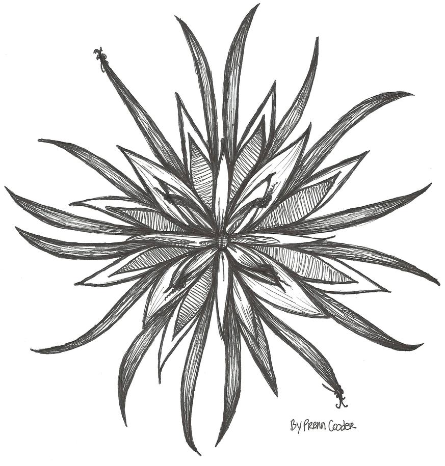 Full Bloom by PrennCooder