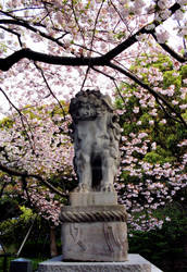 Guarding the Cherrytrees