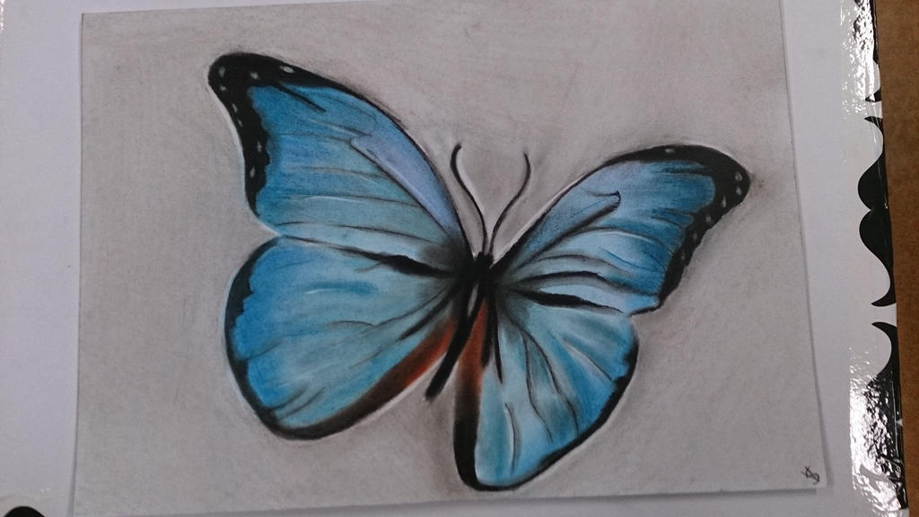 Pastel Drawing 3 Butterfly By MangaMushroomMadness On