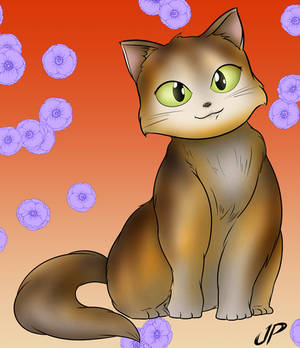 Cat Quickie