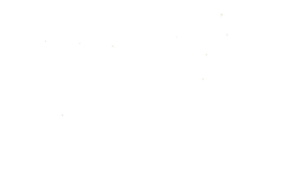 Dandelion 31 by duzulek