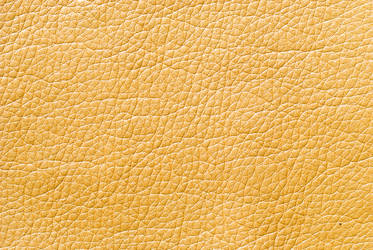 Leather Texture (29)
