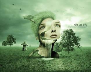 Art 085 by fmdesigner