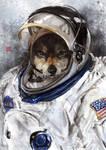 astronaut wolf