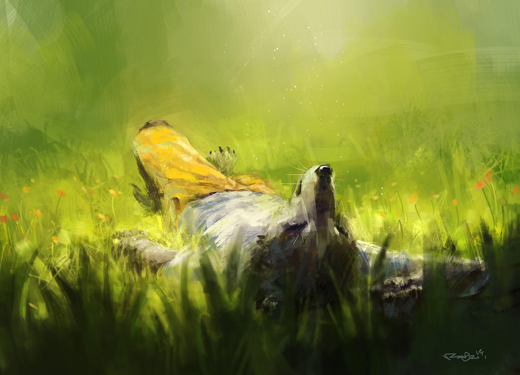 lay on grass by racoonwolf