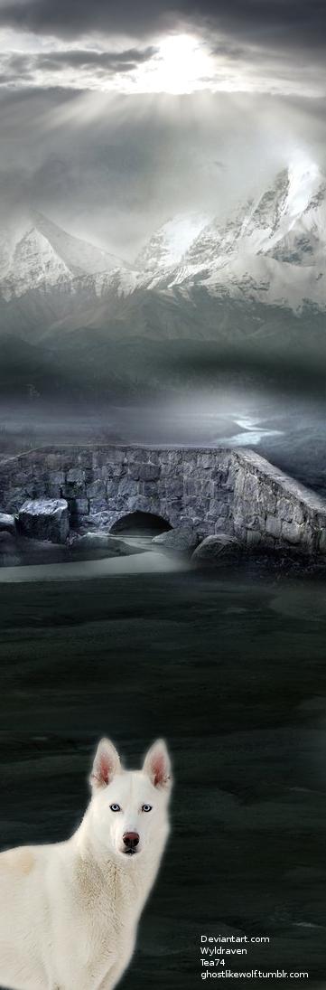 Winter Storm by tea74