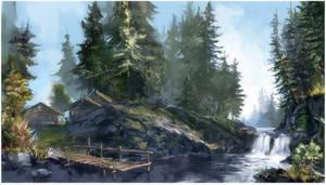 Deep in fir forest