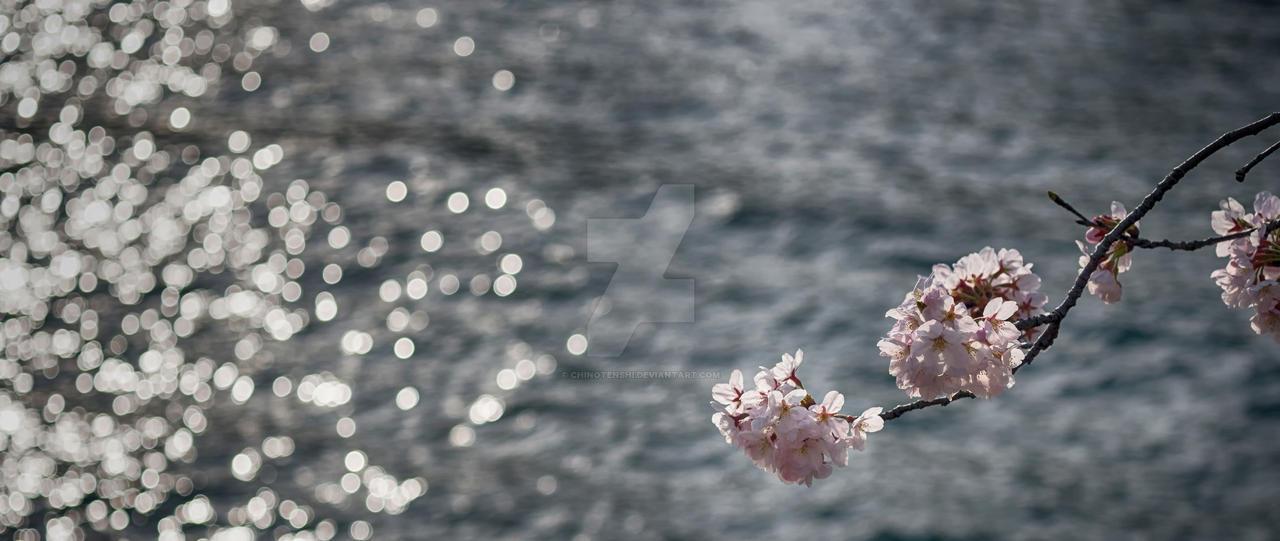 River Pink by chinotenshi