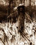 scarecrow by Slopjockey