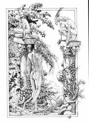 Garden by cizgi
