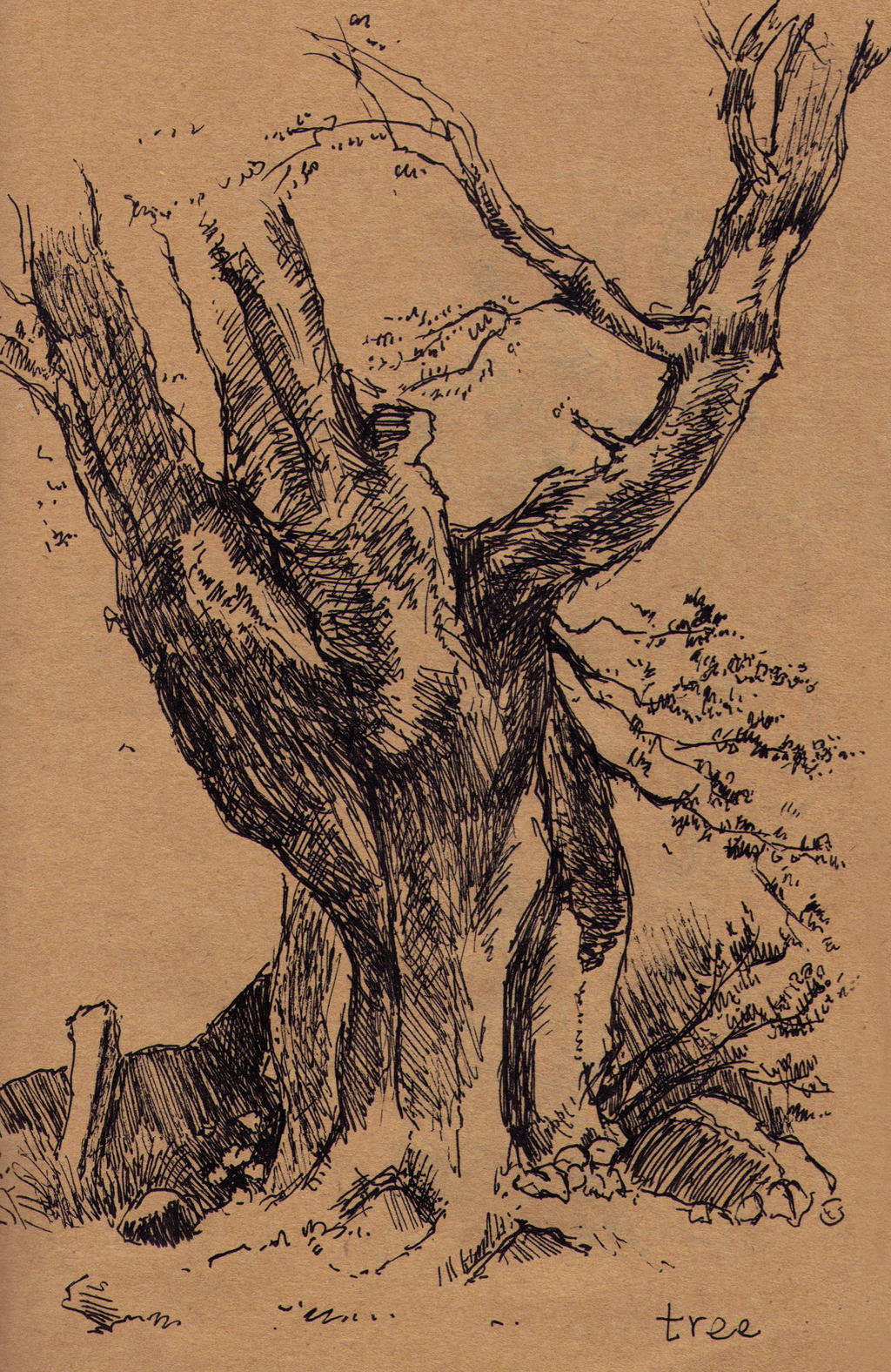 Tree study by Jixed