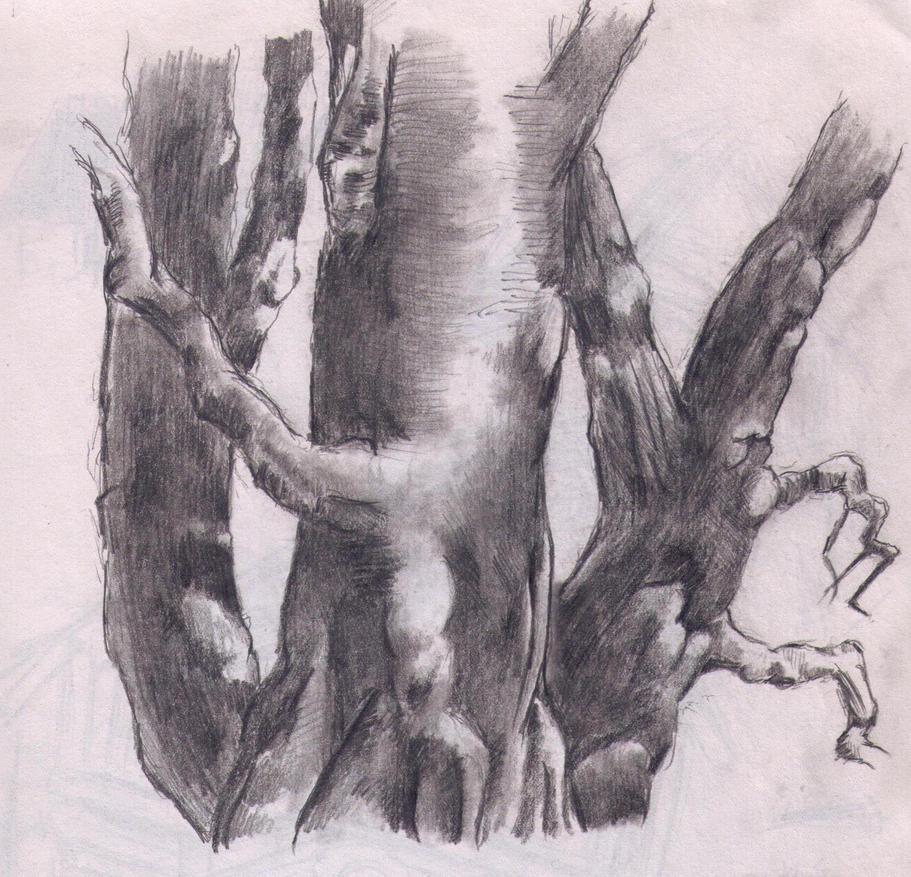 tree study again by Jixed