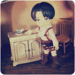 Rivaille Ackerman Doll