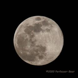 Full Pink Super Moon 2020-04-07