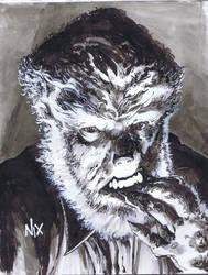 Nix-TheWolfman-24clr by SkeetNix