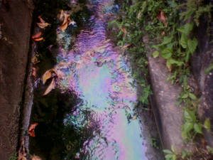 Rainbow Drain.