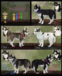 Jet x Lola Puppies