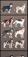 - Lots of puppies -